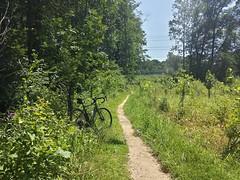 2017 Bike 180: Day 109 - The Dog Days of Summer
