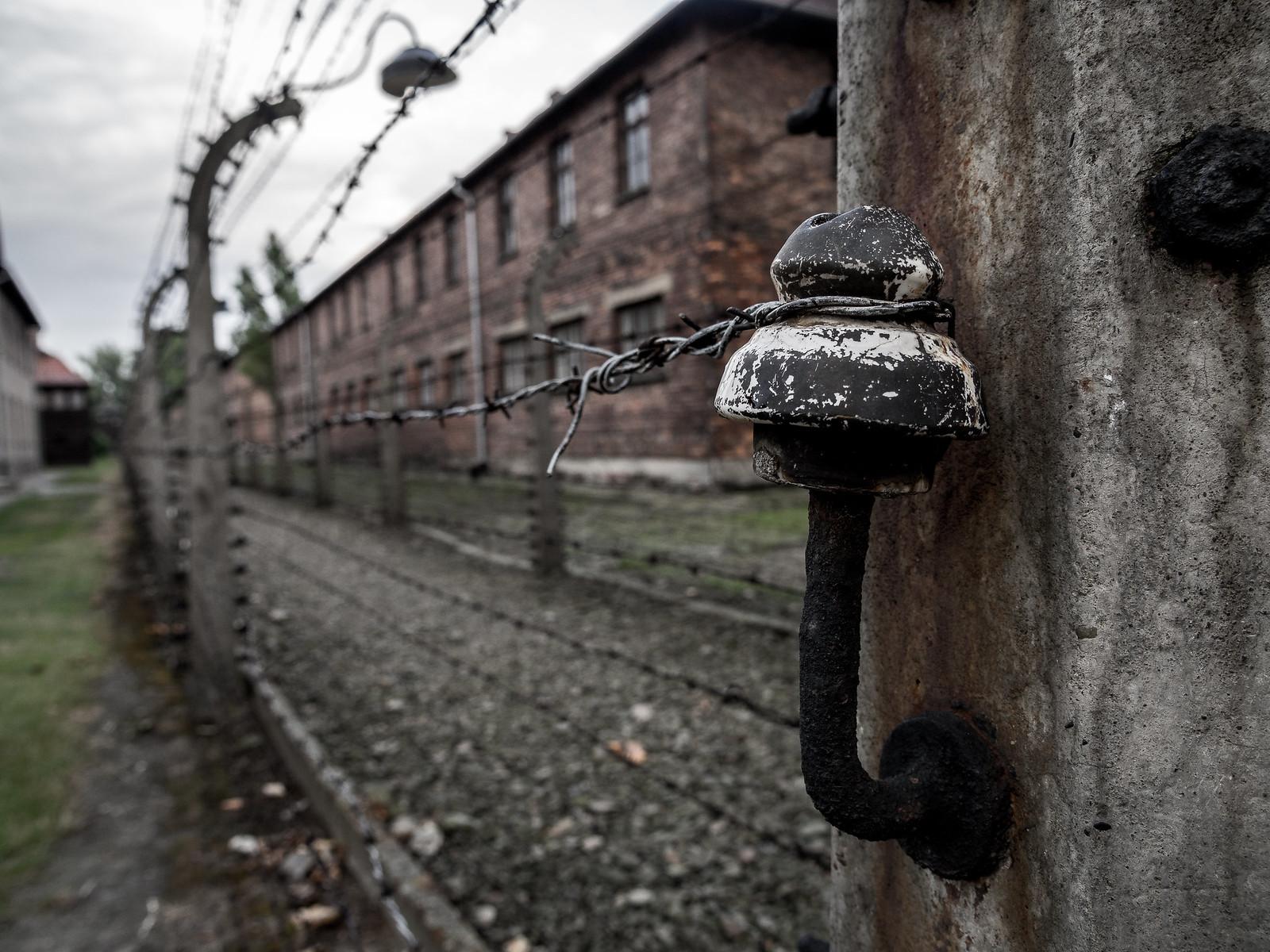 Auschwitzin aitojen sisäpuolella