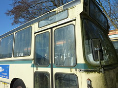 MiddelfartBybusser-3 (Brændekilde, 10.4.10)P1060762