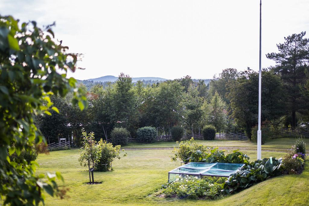 170721 - Grillkväll i Kvaved