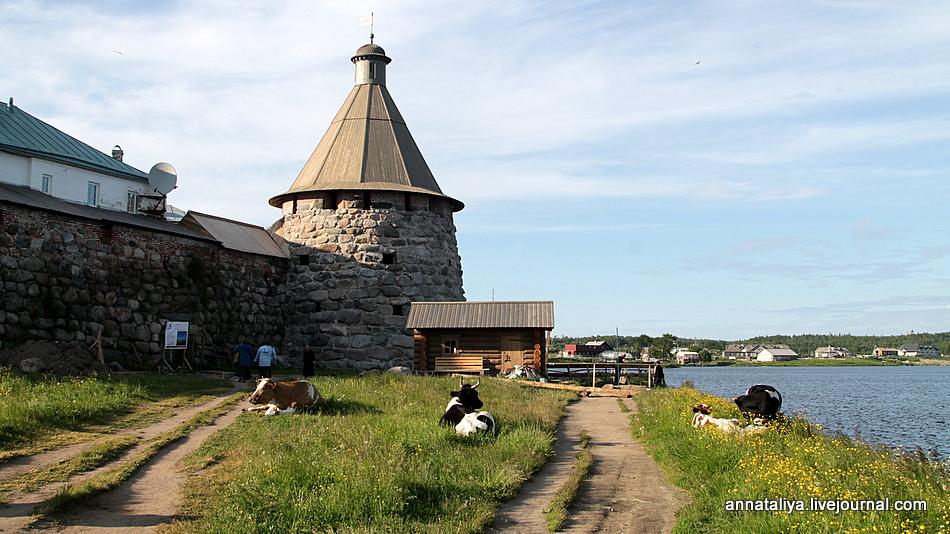 3970 км по самым красивым местам России IMG_3572