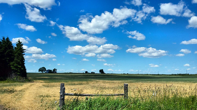 Northumberland County Field
