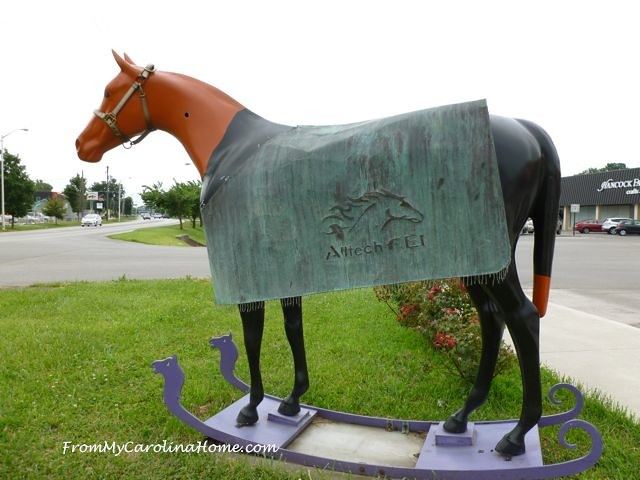 Painted Horse 10