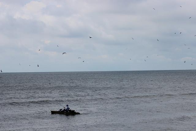 Galveston 071617 (80)