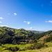Rural NZ...