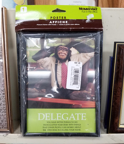 delegate monkey