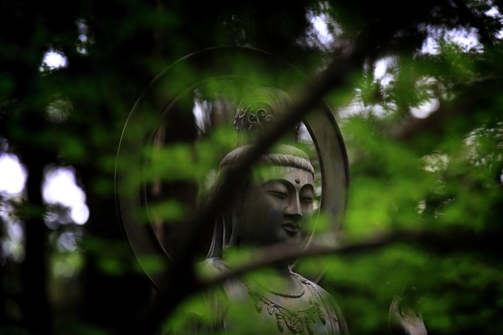 Kannon At Heirin-ji 4