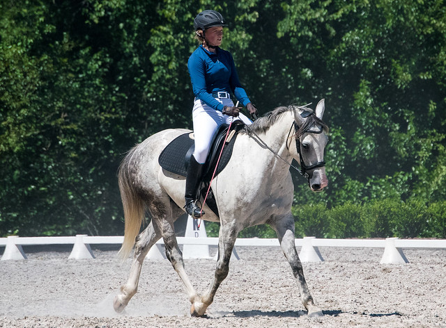 20170709 Grif Dressage Tests-38