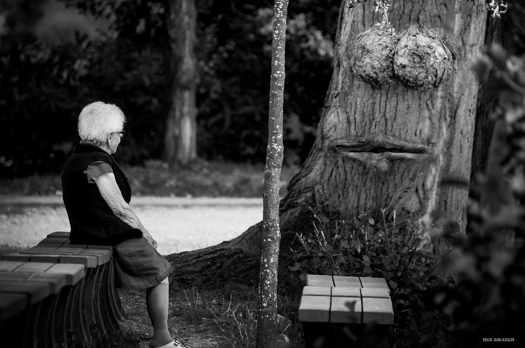 la petite dame qui parlait aux arbres 35858320862_69f646ca20_b