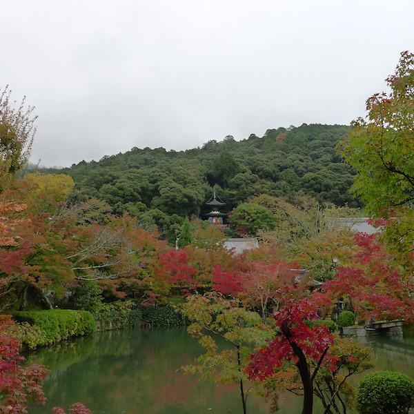 212-Kyoto