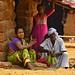 17-04-19 India-Orissa (422) Gandia R01