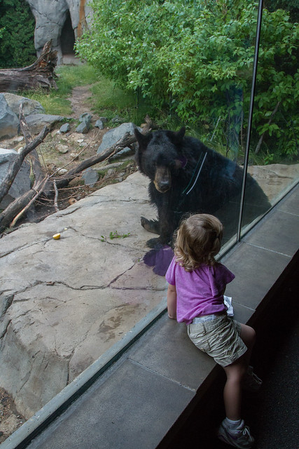 Grace and bear