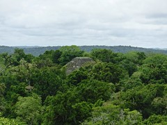 Tikal Lost World Temple