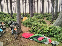 This is why I love the hiker biker campsite at Cape Lookout! It was packed, but we made it work. #capelookoutstatepark #bikecamping #biketouring #hikerbiker #capelookouttripjuly2017