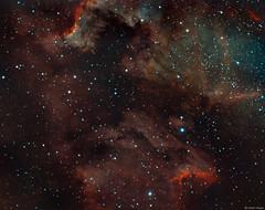Pelican Nebula and Cygnus Wall region in Narrowband