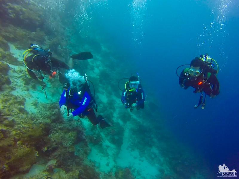 Scuba Divers Drift Diving