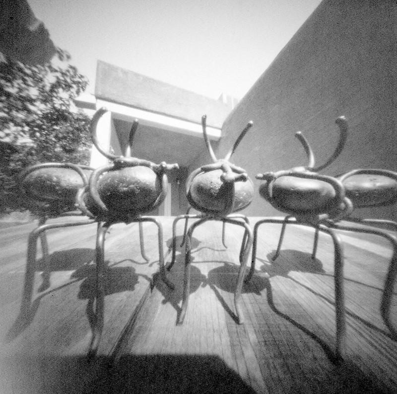Ants002 (1)