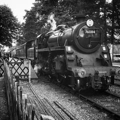 207/365 Steam