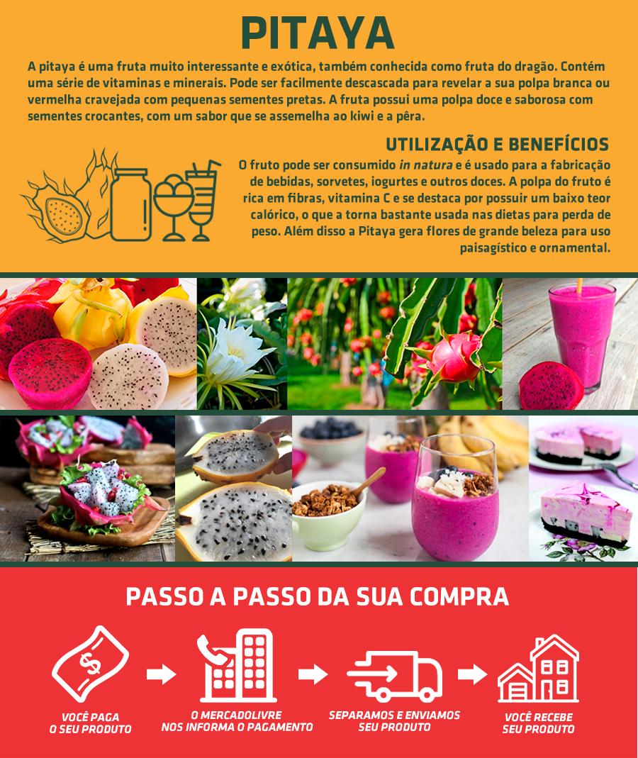 anuncio_quintal-Recuperado_03