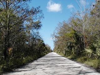 Janes Scenic Drive 2 (CR 837)