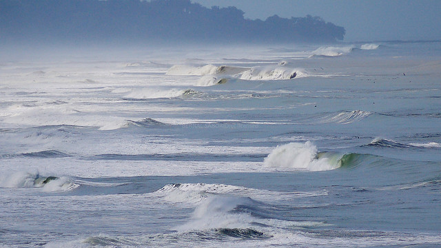 surf paradise, Panasonic DMC-G1, Lumix G Vario 45-200mm F4.0-5.6 Mega OIS