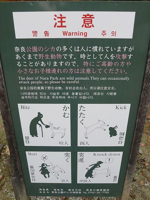 314-Nara