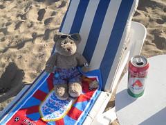 Thirsty work, this sunbathin' lark!