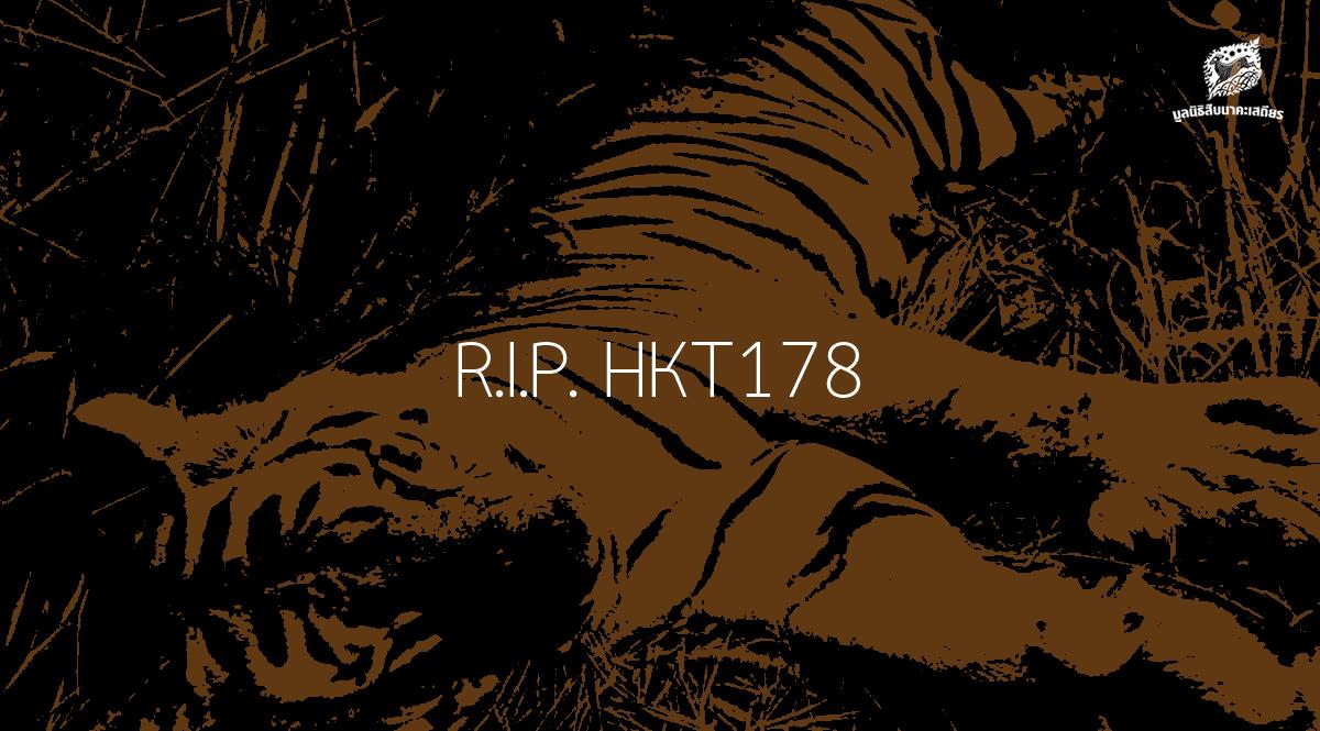 HKT178