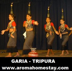 garia Tripura 14