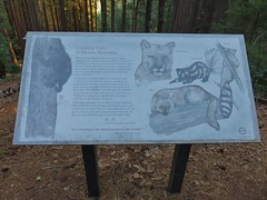 Interpretive sign along the Vista Point Trail