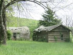 Log tourist cabins (1 of 3)