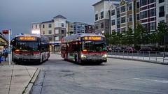 WMATA Metrobus 2012 New Flyer Xcelsior XDE40 #7215
