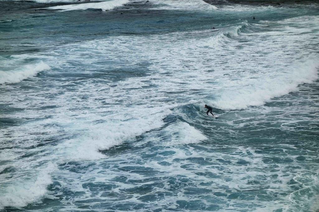 Sydney - Surfer 1