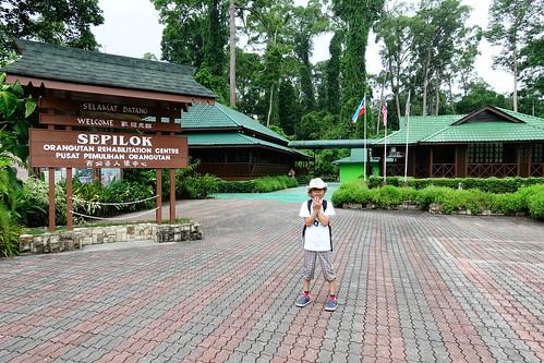 西必洛人猿保育中心