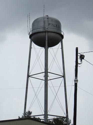 Municipal Water Tower Pinckard AL