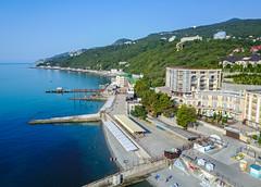 Yalta. Crimea. Beach Dolphin.