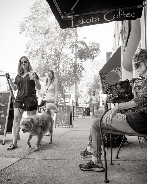 A Dog's Life bw-4396