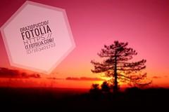 #microstock #marketing #webdesign #design #WebContent #SEO #csstemplates #css #HTML5 #Websites #web20k #web2015 #web #social #branding #oraziopuccio #socialmedia #business #discount #travel #smallbiz #success #website  File Link: https://it.fotolia.com/id