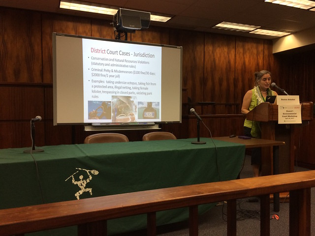 Hawaii Environmental Court Workshop 4/25/17