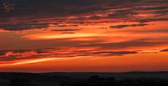 492 sunset