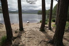 Loch Garten & The Cairngorms