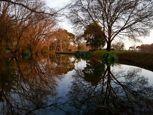 ballarat victoria view australia landscape lake reflection trees coloured