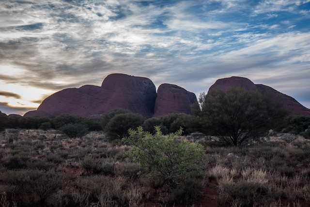 Kata Tujata Morning-2 - How to do your own self-guided Uluru tour in Australia. Visit Ayers Rock in the Australian outback for cheap | Things to do in Uluru | Budget tour of Ayres Rock | Road trip from Alice Springs to Uluru | Free camping at Uluru