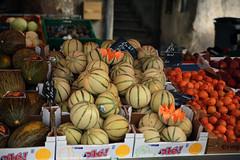 Les melons charentais du Gard