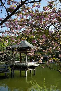 Narita Temple Park