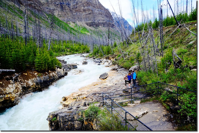 Marble Canyon, Kootenay National Park 7