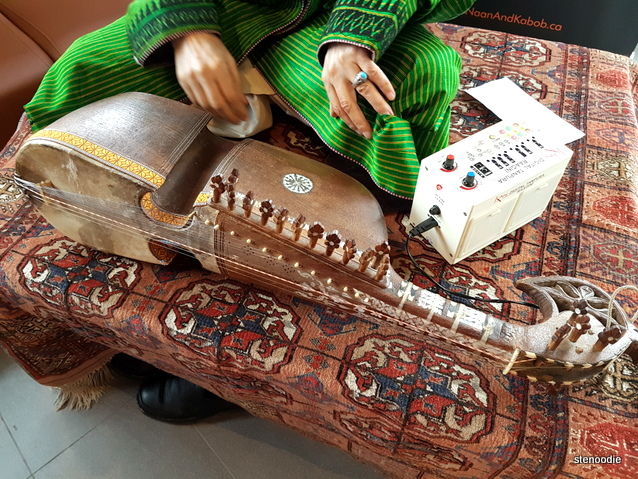Afghan musical instrument