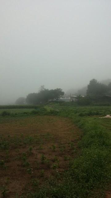 아침풍경 | 화북초등학교