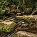 Crabtree Falls - VA
