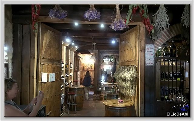 Museo del Vino Pagos del Rey y visita a Toro (12)